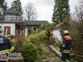 Sturm über Hamburg. In Sasel kippte ein Baum auf ein Einfamilienhaus. Die Feuerwehr musste das Haus von der Baumlast mittels Kettensägen befreien. Foto: Dominick Waldeck